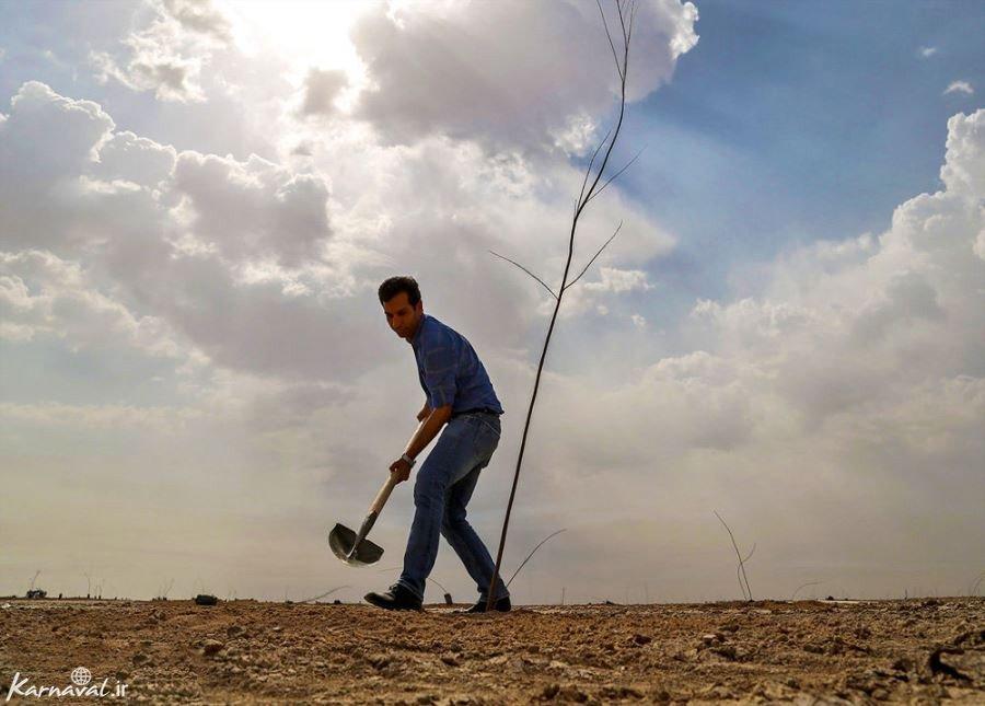 تصاویری از روز درختکاری در اهواز