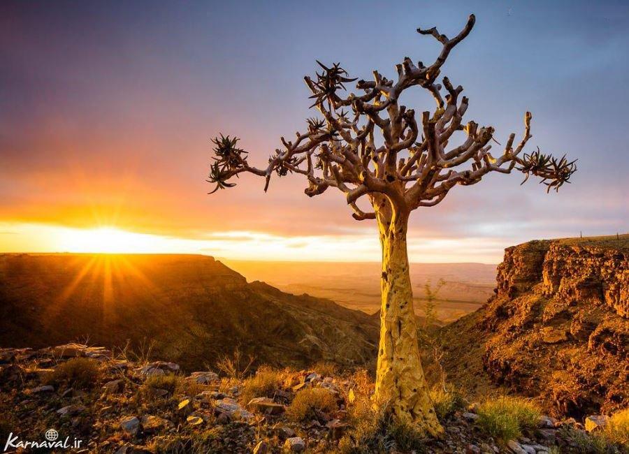 تصاویری از نامیبیا