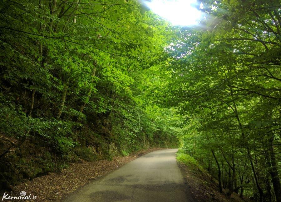 عکس های آبشار ویسادار گیلان و جاده جنگلی پره سر