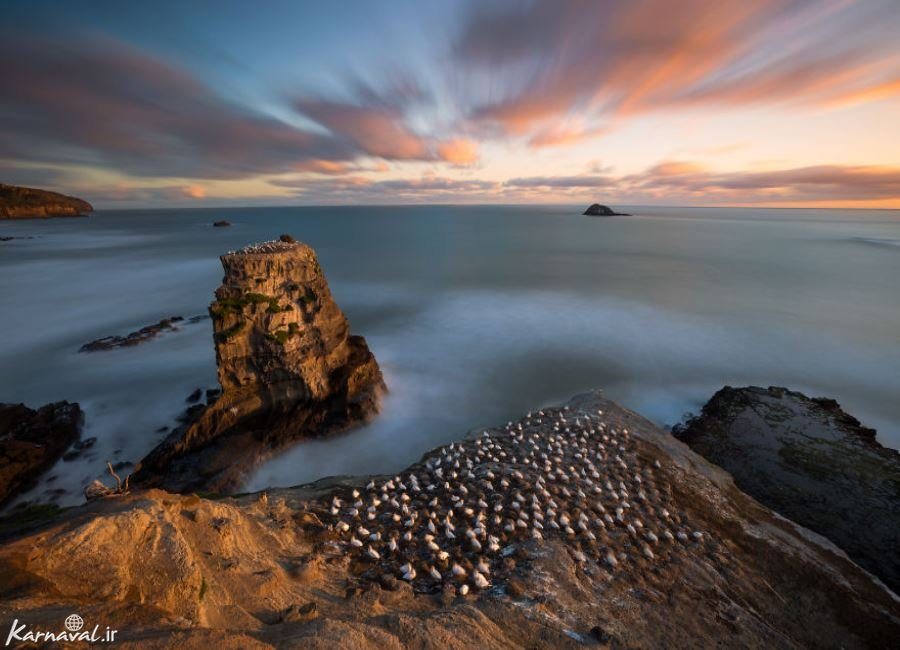 عکس هایی از نیوزیلند