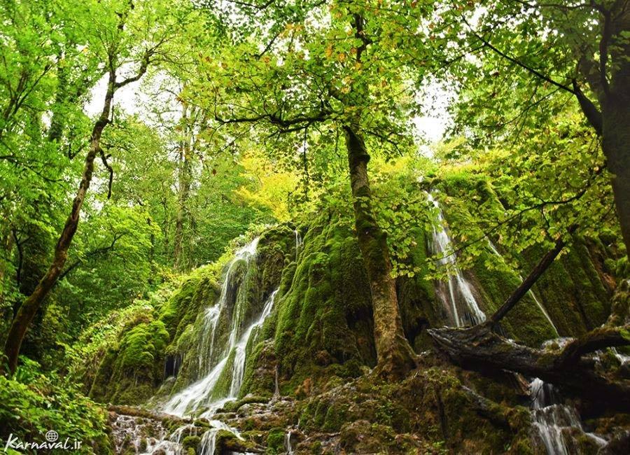 تصاویری از جنگل سنگده مازندران