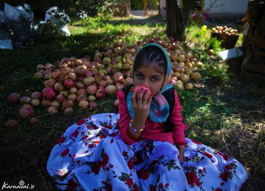 تصاویر جشن انار چینی در روستای انبوه