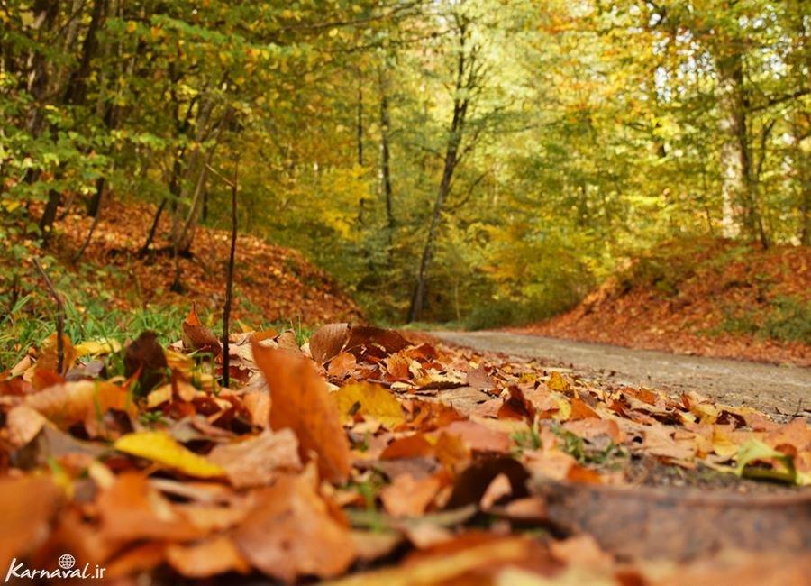 تصاویر پاییزی سنگده
