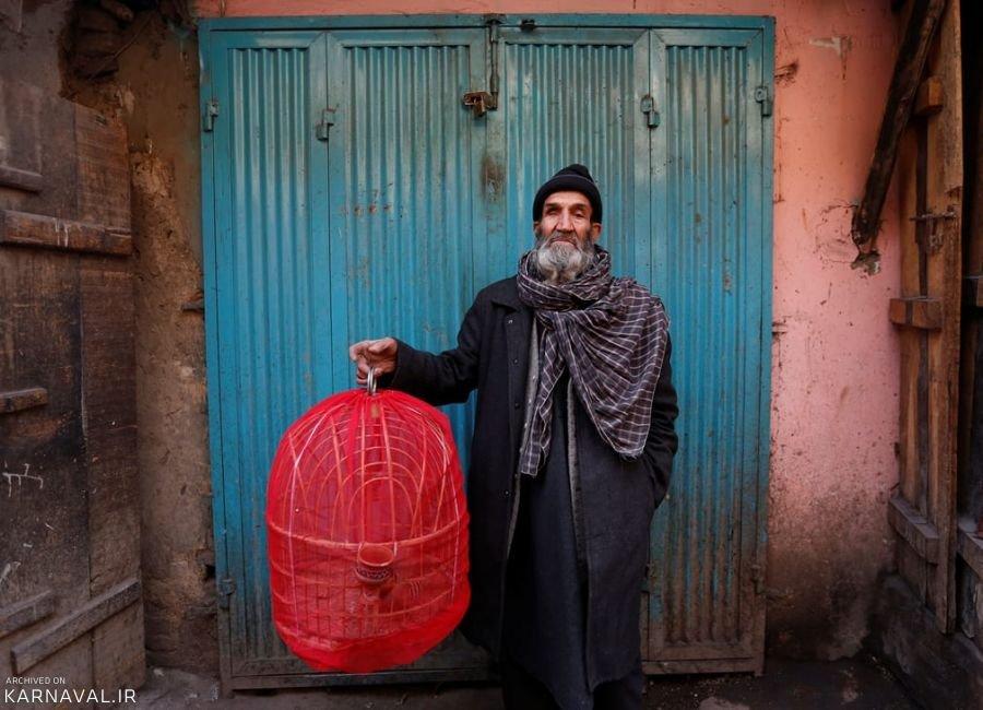 تصاویری از بازار پرندگان کابل