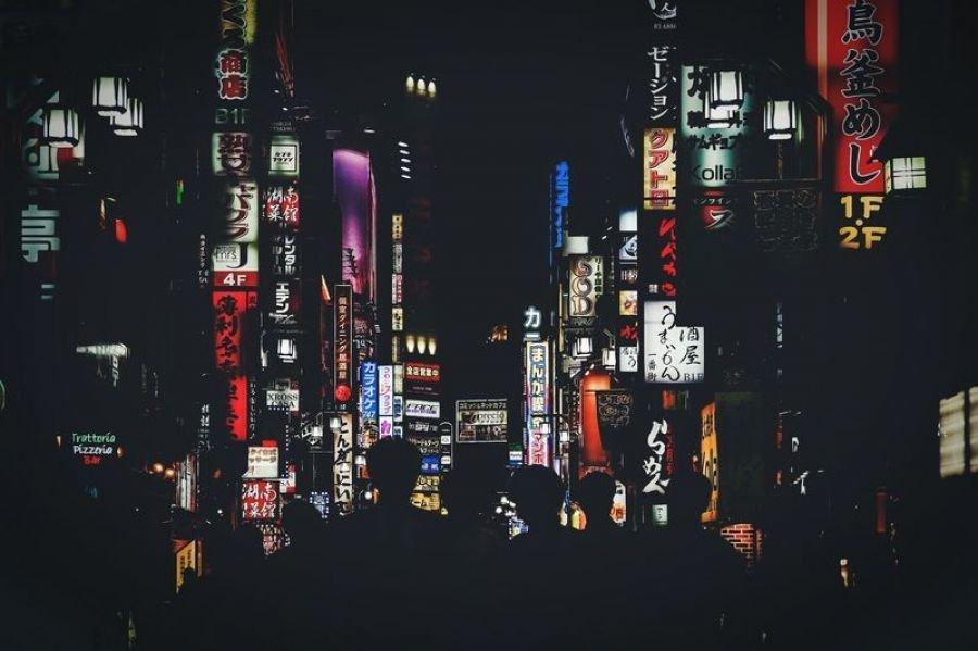 نورهای شب