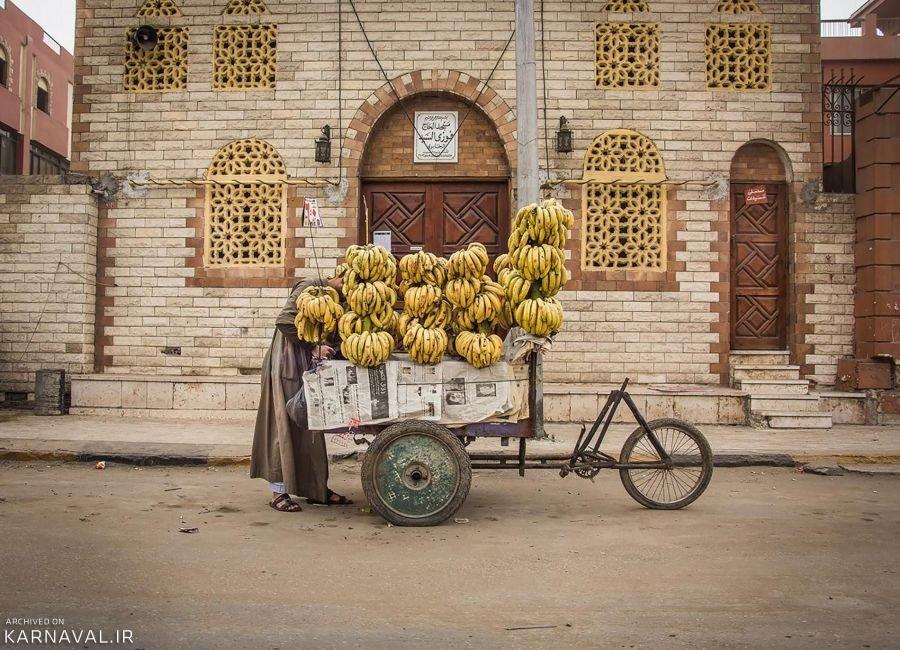 تصاویری از مصر
