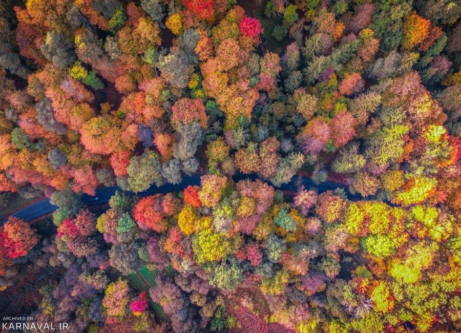 تصاویر هوایی از پاییز لیتوانی
